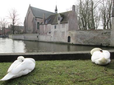 view at church of Begijnhof