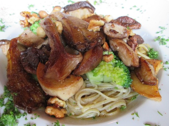 rice noodles, forest mushrooms, aioli, broccoli