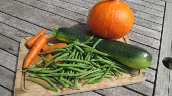 vegetables from our garden