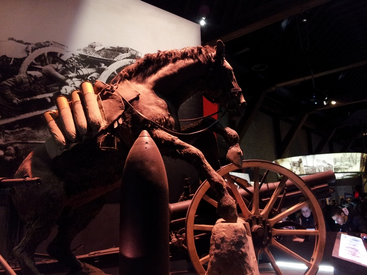 Stuffed horse, Exibition Flanders Fields Museum, Ypres (2012)