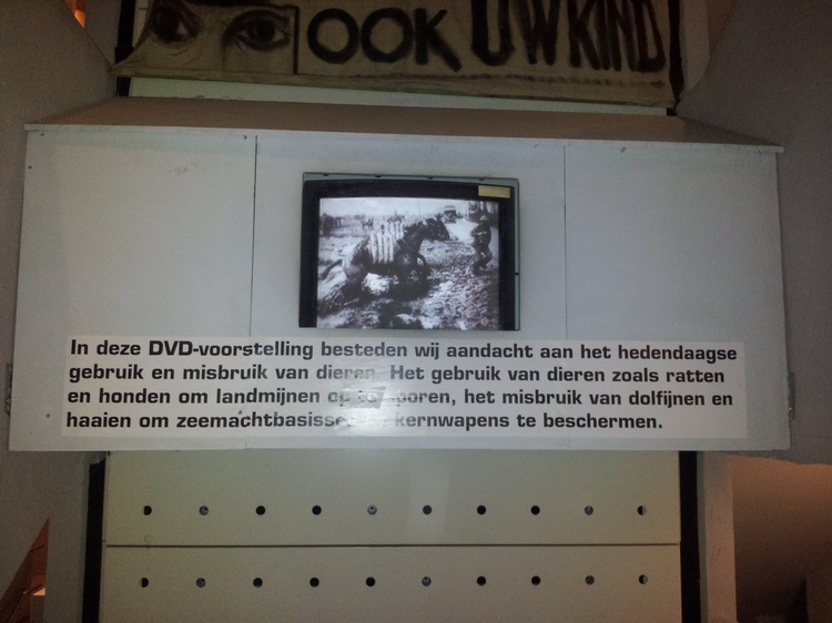 Use of animals during war, Exhibition Yser Tower, Diksmuide (2013)
