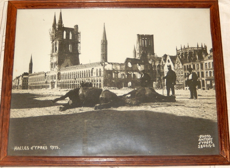 dead animals market place Ypres, April 1915, Photographer Anthony
