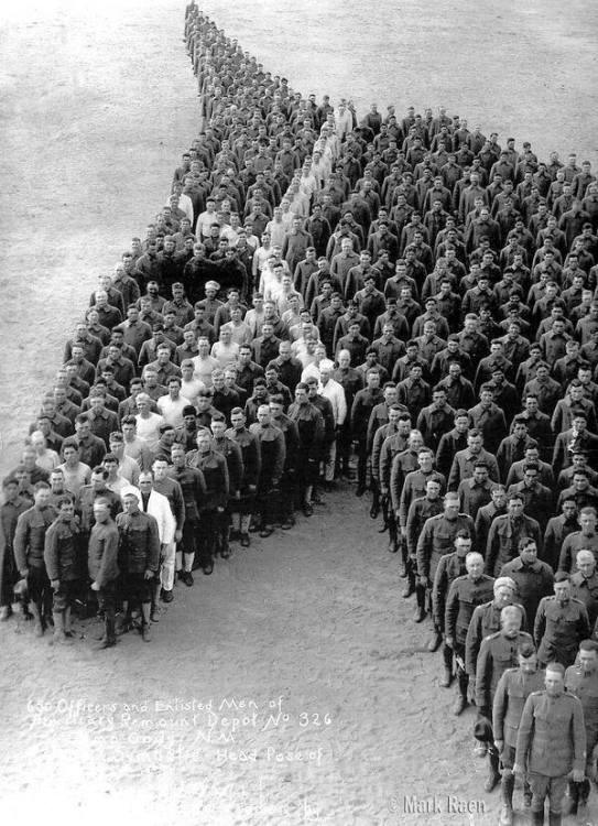 Tribute to the use of horses , probably during WWI, photographer  Mark Caen
