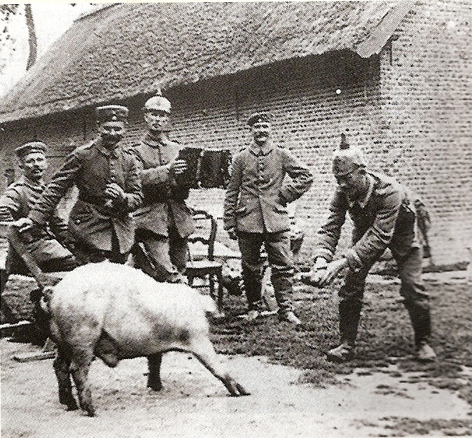pig and German soldiers, WWI