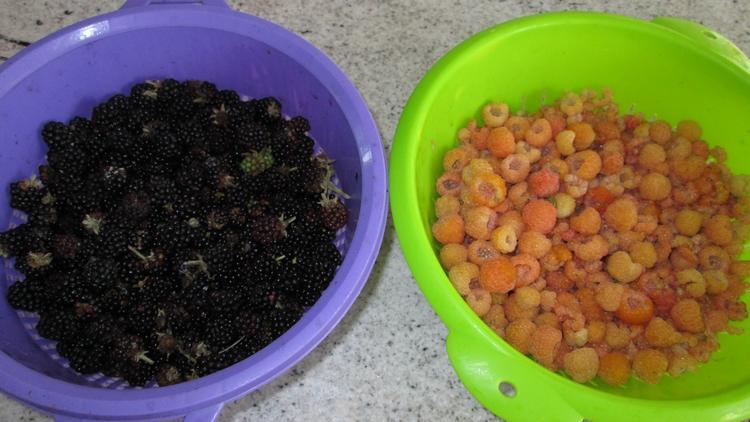 bramberries (left)