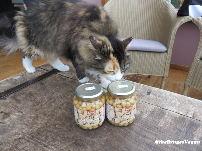 Chickpeas in jar, with photobombing cat