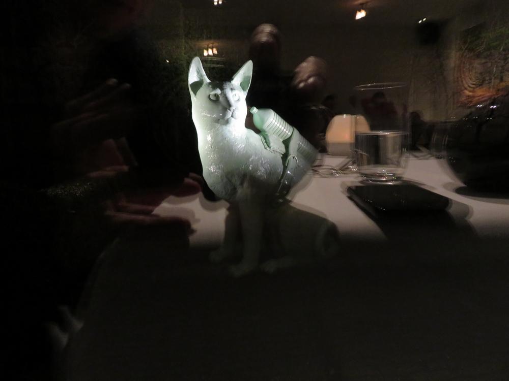 Statue in back garden. Cat with PET bottle = petcat? )