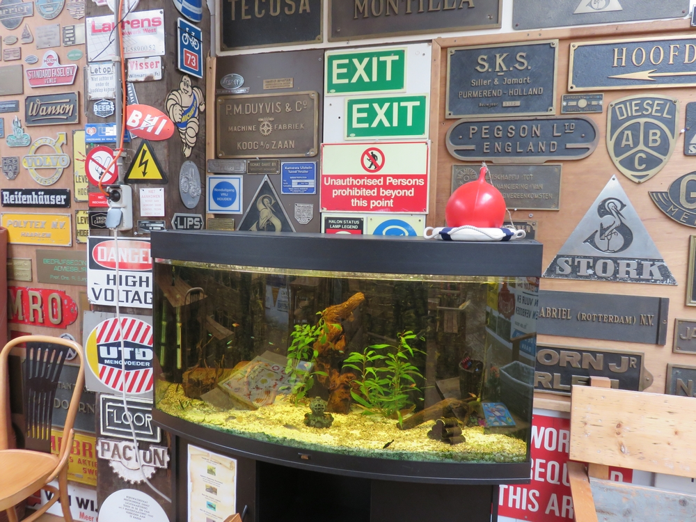 one of the aquariums,  pity for the fish :-(