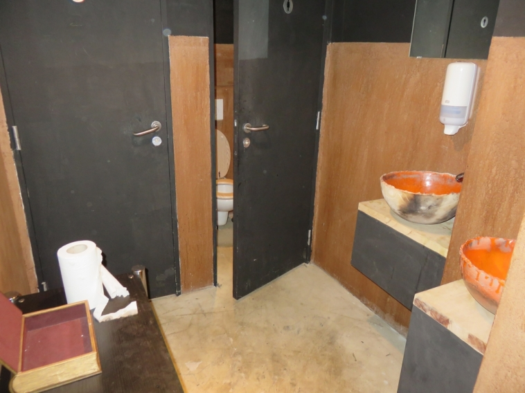 Moonfood, toilets downstairs. Not so tidy.