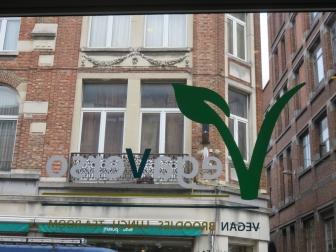 Vegaverso logo on window