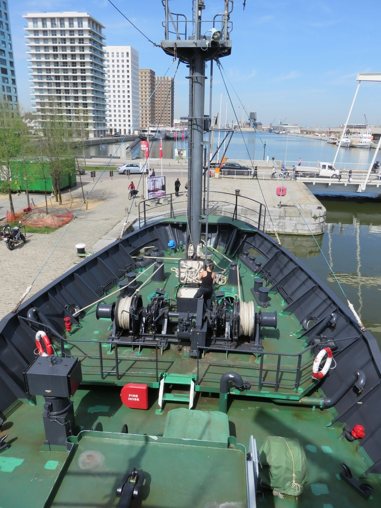 The Sam Simon in Antwerp