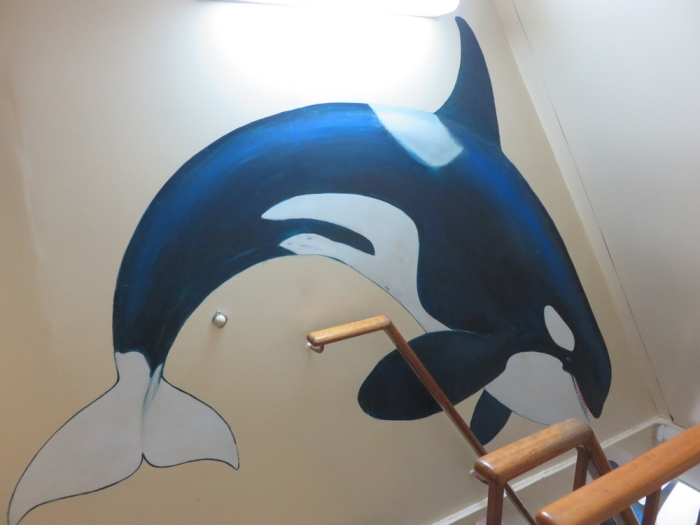 inside the Sam Simon, Sea Shepherd, in Anwterp