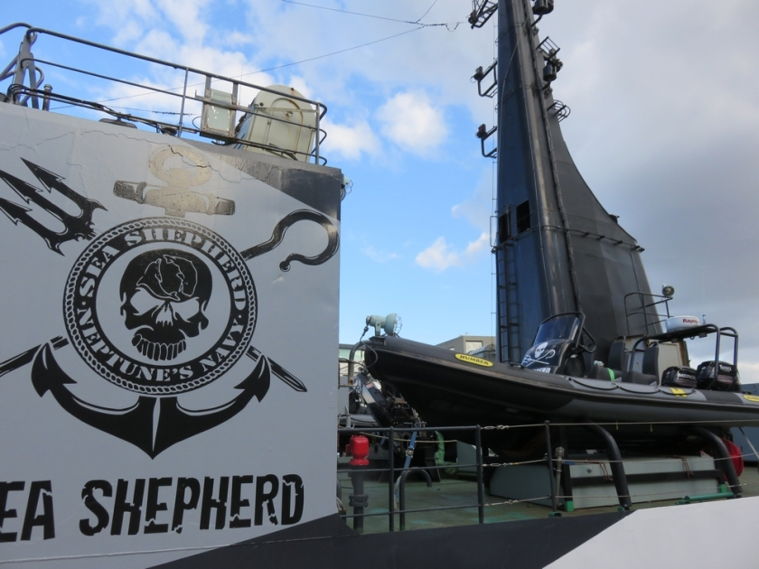 inside the Sam Simon, Sea Shepherd, in Anwterp