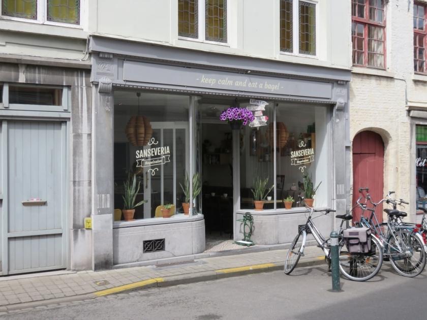 Sanseveria bagelsalon, Bruges