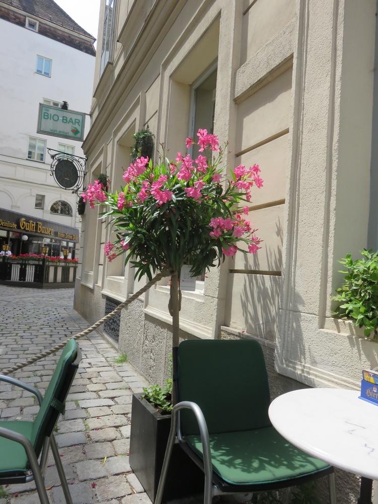 Bio Bar von Antun, terrace front