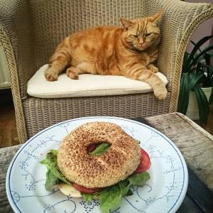 Happy to have found these bagelbuns at Okay! Mabelle is unimpressed though 😄 With wilmersburger (vegancheese), tomato, lettuce and veganaise.