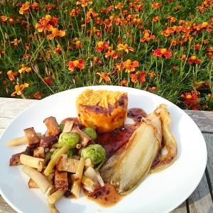 A more fancy dish for lunch, because it's World Vegan Day 😁 Chicory, pumpkin potato mash, yellow haricots, brussels sprouts, sesame tofu, with gravy sauce. Nearly all homegrown too 🍀🌿🍀 Yes, it was good 😄👌👌