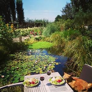 I love Summer and I love my garden 😄 Lunch, with a #photobombingcat 😉 (who I also 💝) ..