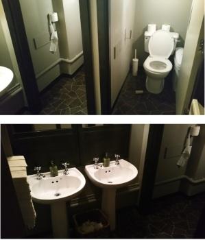 Vanilla Black, toilets downstairs, modern, but a bit messy.
