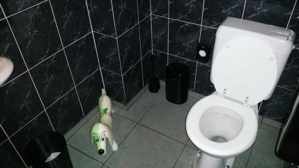 Toilets at the back, spacious and clean, De Twijfelaar, Bruges